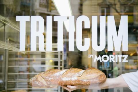 triticum by moritz